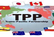 Bảo hộ nhãn hiệu trong TPP